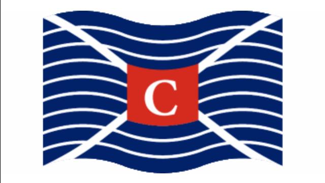 clarksons-platou-experienced-panamax-dry-cargo-broker-geneva_201707101433403